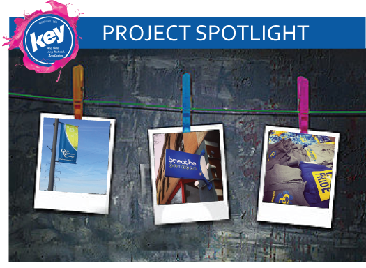 project-spotlight